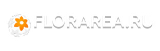 Форум florarea.ru